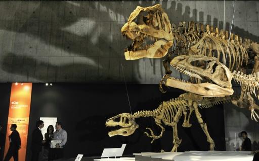 L'extinction des dinosaures causée par un astéroïde ou des volcans? C'est compliqué