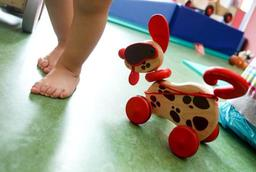 Maxi Toys reprend Bart Smit