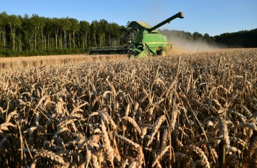 Faillites et suicides agricoles: le travail de fourmi de Solidarité Paysans