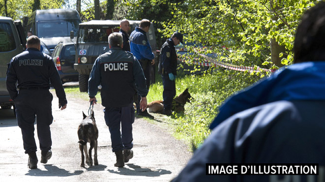 Suisse: un chien policier traque un voleur sur plus de 5 kilomètres
