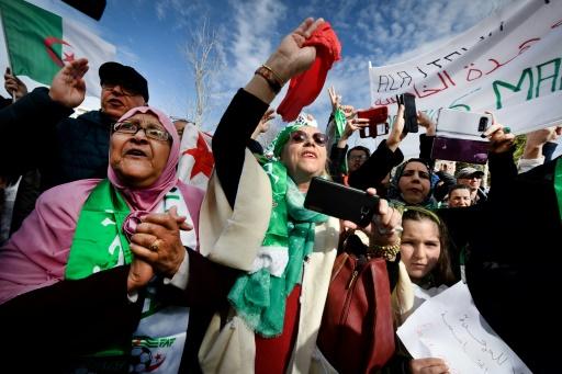 Des milliers de manifestants en France contre un 5e mandat de Bouteflika