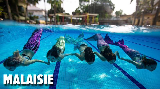 Sous l'eau, elles deviennent des SIRÈNES: