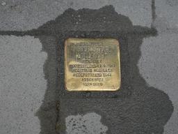 Trente pavés de la mémoire pour les victimes du nazisme placés à Anvers