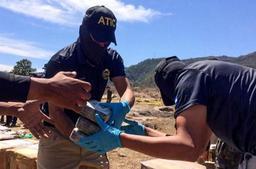 Des tonnes de cocaïne à destination de la Belgique interceptées via un programme de l'ONU