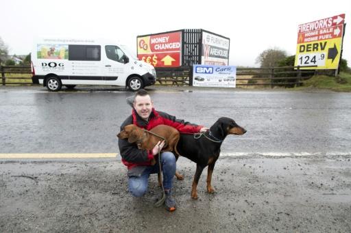 Brexit: L'embarras d'un propriétaire d'un chenil à cheval sur la frontière irlandaise