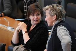 Culture: la réforme des instances d'avis validée dans la nuit en commission du Parlement