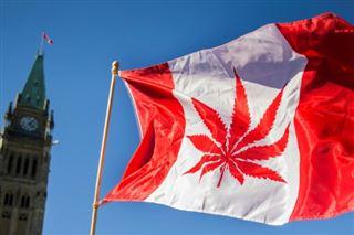 Pour de jeunes Canadiennes, le cannabis permet d'être une meilleure mère