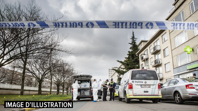 Anvers: trois grenades non explosées découvertes près d'un parc, la chaussée complètement fermée