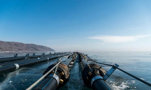 En Sibérie, révolte contre la mise en bouteille du lac Baïkal par les Chinois