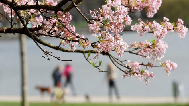 Prévisions météo: temps plus lumineux et plus doux ce mercredi, cela va-t-il durer?