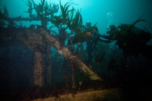 Bretagne: sous la mer, un patrimoine englouti à découvrir et valoriser