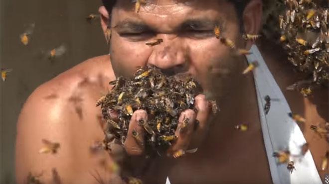Il enfonce des centaines d'abeilles dans sa bouche (vidéo)