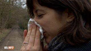Même si vous n'êtes pas allergique, le pollen de bouleau peut avoir des conséquences sur votre santé 4