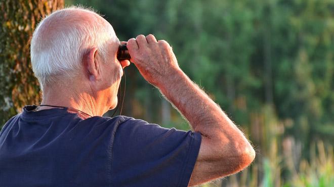 Du nouveau pour vos pensions: pouvez-vous souscrire à la PLCS pour la rendre plus confortable?