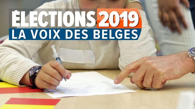 Langues anciennes, religion, devoirs… le Belge conservateur à l'école? Voici vos réponses à notre enquête sur l'enseignement