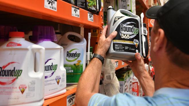 Monsanto condamné à payer plus de 80 millions de dollars à un retraité malade d'un cancer