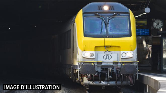 Découverte d'un colis suspect dans la gare de Waremme: interruption totale du trafic des trains