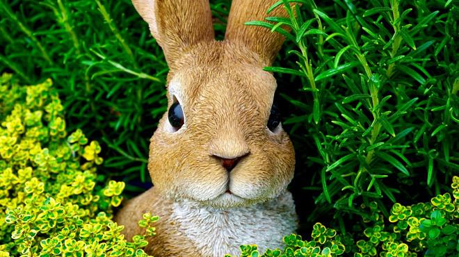 Prévisions météo: quel temps aurons-nous pour les premiers jours de congé de Pâques?