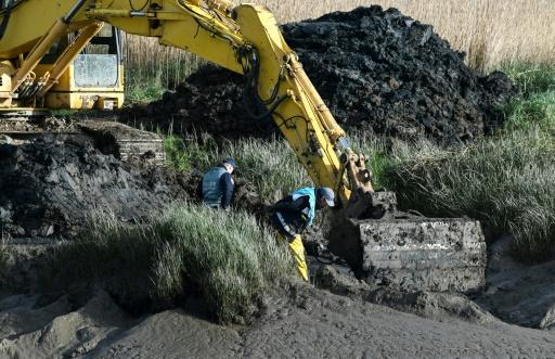 Affaire Troadec: nouvelles fouilles sur l'une des scènes de crime