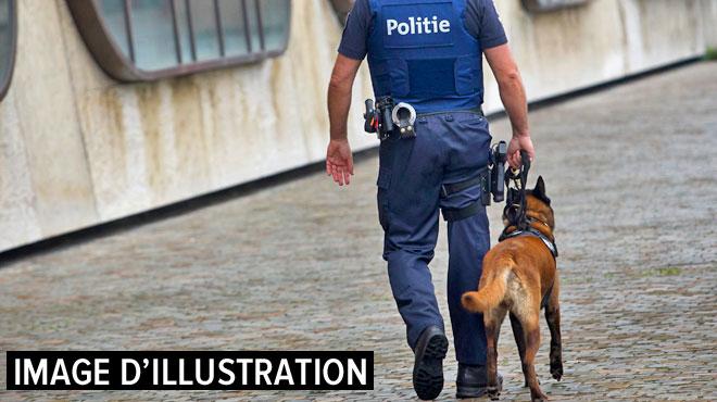 Opération contre le trafic de drogues à Verviers: 4 personnes privées de liberté