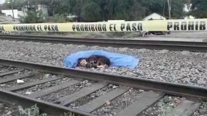 Mexique: les bouleversantes images d'un chien qui ne veut pas quitter son maître décédé, percuté par un train (vidéo)