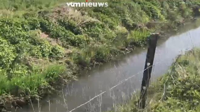 Le cours d'eau le plus pollué d'Europe est en Belgique selon Greenpeace