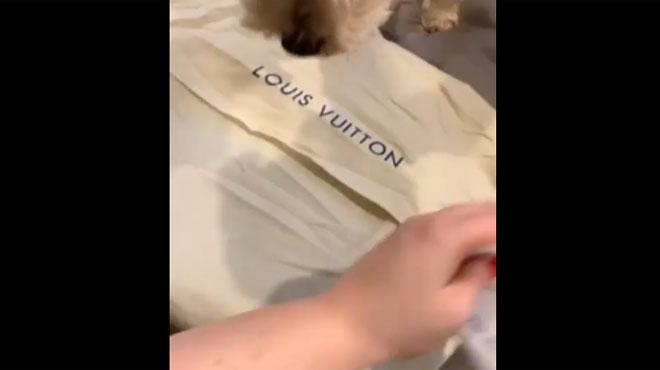 Elle déballe fièrement son tout nouveau sac Louis Vuitton, mais cela ne se passe PAS DU TOUT comme prévu (vidéo)
