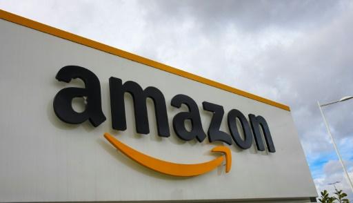 Adresses internet: Amazon gagne une manche contre l'Amazone