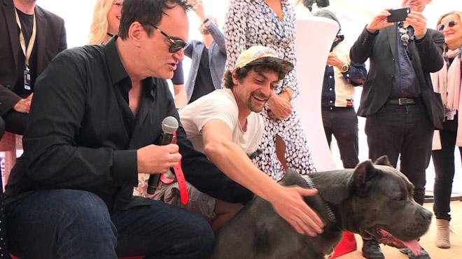 La chienne du film de Tarantino reçoit une palme à Cannes (vidéo)