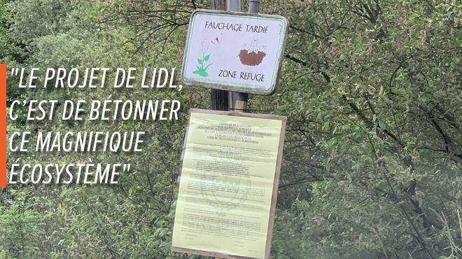 Patricia et ses voisins CONTRE l'implantation d'un Lidl à Rixensart- Le projet est de BÉTONNER un magnifique écosystème