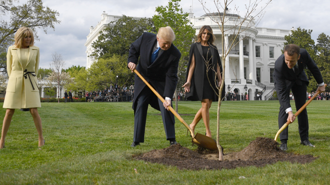 Le petit chêne est mort — Trump-Macron