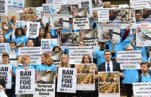 New York débat de l'interdiction du foie gras
