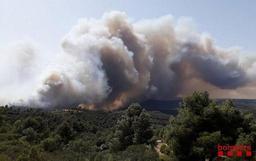 Vague de chaleur - Espagne: incendie de forêt en Catalogne
