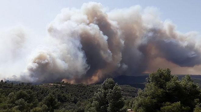 Vague de chaleur en Espagne: un incendie de forêt hors de contrôle fait rage en Catalogne