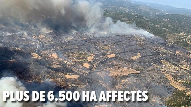 Un incendie HORS DE CONTRÔLE ravage la Catalogne