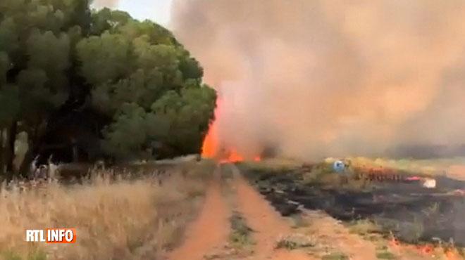11 maisons et 557 hectares détruits par des incendies dans le sud de la France