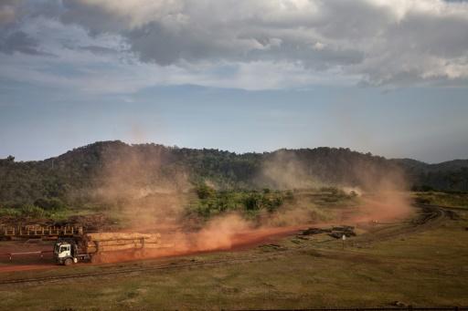 Au Gabon, les forestiers éprouvés par le scandale du bois précieux