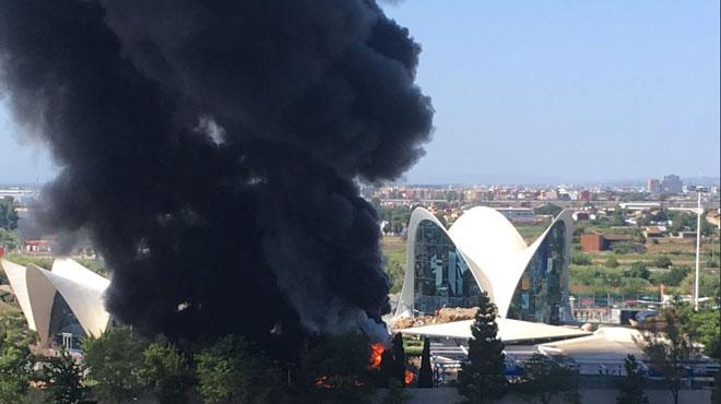 Incendie dans le plus grand aquarium d'Europe à Valence: les images impressionnantes du nuage de fumée