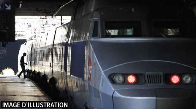 France: un adolescent meurt électrocuté en montant sur un train