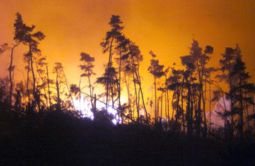 Ardèche: les pompiers viennent à bout dans la nuit d'un incendie ayant mobilisé neuf avions