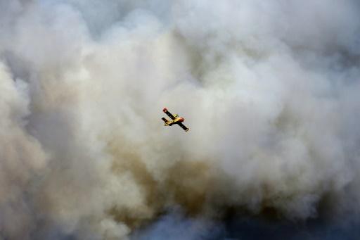 Incendies à Argelès-sur-Mer: plus de 2.500 vacanciers évacués de trois campings