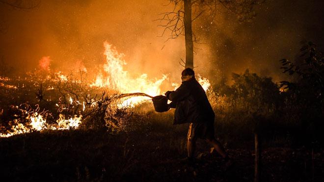 Plus de 900 pompiers luttent contre des feux de forêt — Portugal