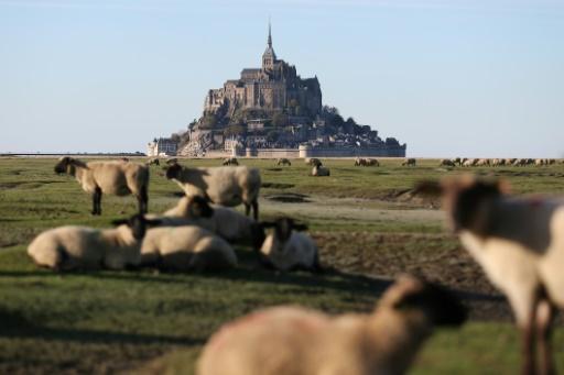 Des plages proches du Mont-Saint-Michel victimes de pollutions