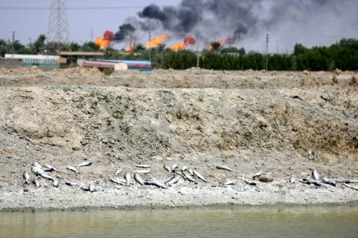 Irak: Bassora risque de subir une nouvelle
