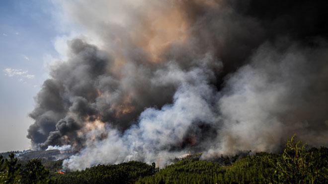 Après 4 jours de lutte, les pompiers sont venus à bout de l'incendie au centre du Portugal: