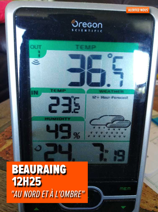beauraing-thermometre