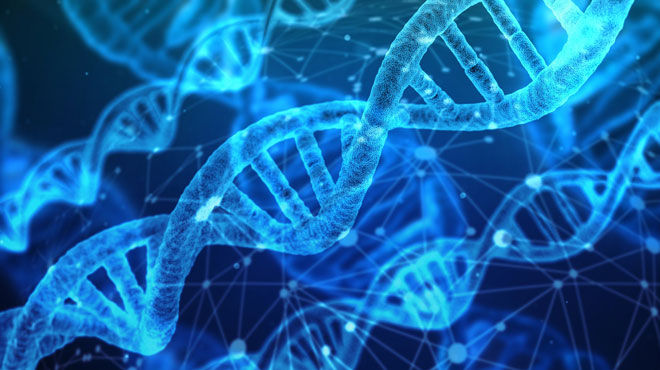 Un site de généalogie génétique aide la police américaine à identifier un criminel: Il est condamné à perpétuité pour un double meurtre