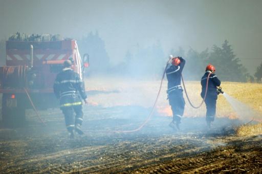 Canicule: des milliers d'hectares de cultures incendiés