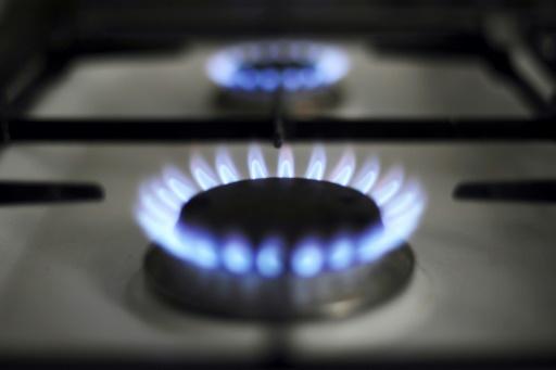 Gaz: les tarifs réglementés baissent de 0,5% au 1er août
