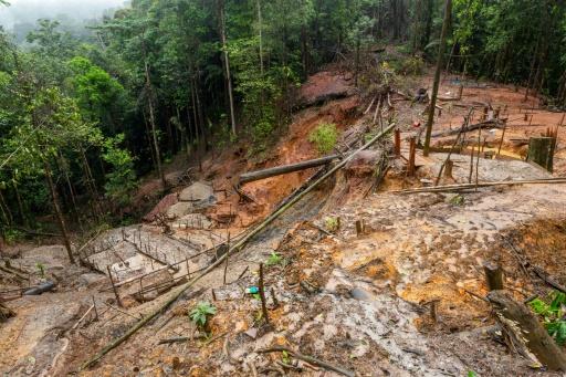 Brésil: le corps du chef indigène tué la semaine dernière sera autopsié